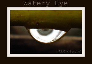 watery eye