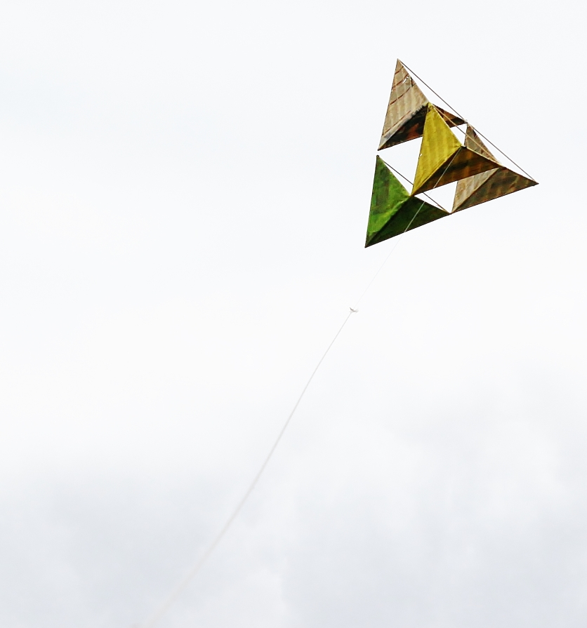 Lets go fly a kite.