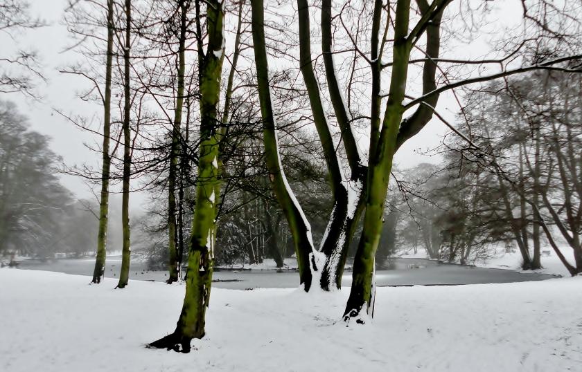 Boultham Park Lake Lincoln UK